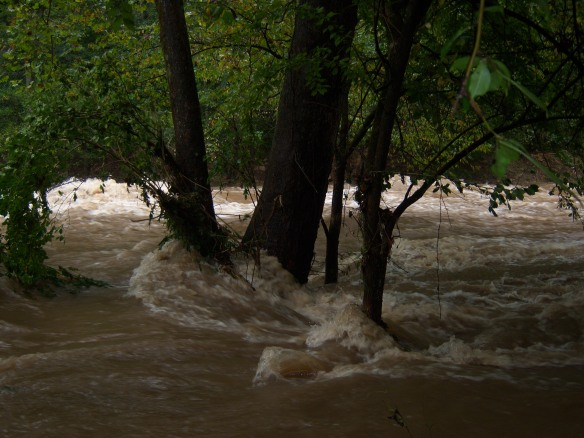 Who left the tap on? Boone Creek, which runs alongside the historic Iroquois Hunt Club, was a raging torrent this morning thanks to several days and nights of heavy rains.