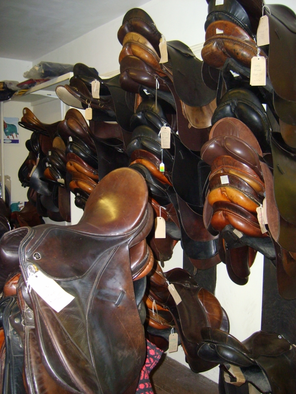 Need a saddle? Calcutt's has them--and pretty much everything else