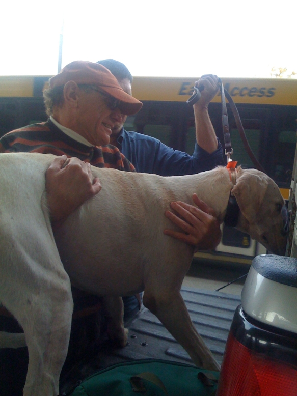 MFH Jerry Miller and kennelman Alan Foy load hounds into the hound truck for the ride home to Lexington.