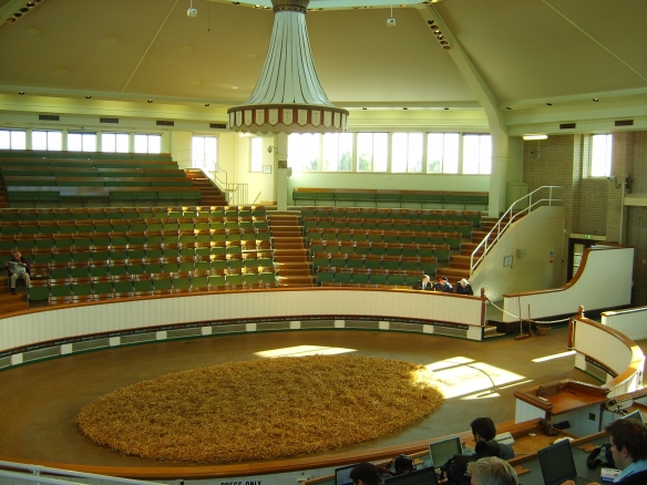 "The Tattersalls auction ring is round, intimate, light, and airy, with a domed top. It is, as one attendee observed, ""a little like sitting inside a teapot."" Unlike at major Thoroughbred sales in the United States, where the horses generally are held standing in the center of a small auction area, at Tattersalls the horses are walked around the path so potential buyers can watch them while bidding."