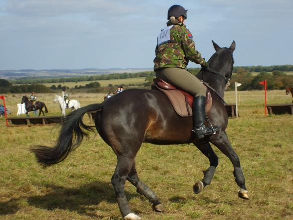 KIng's Troop rider on a gun horse